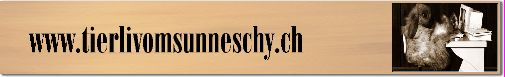 Interessantes über Meerschweinchen und Zwergkaninchen auf meiner  Homepage. Verkaufe aus Innen-und Aussenhaltung in verschiedenen Farben. Langhaarmeerschweinchen wie: Sheltie, Texel, Coronet und Merino aber auch HM-strubeli und glatthaar sowie Zwergkaninchen und Zwergwidder in verschiedenen Farben .Tips über Haltung und Pflege sowie Rassenkunde. Neu nun auch mit Webcam.